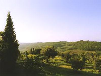 Italy-rental-villa-caselline-view1