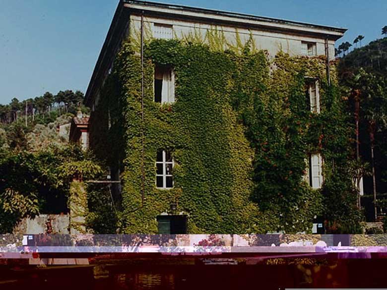 Villa Jasmine Lucca - villa