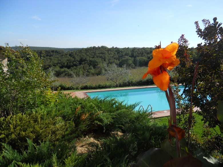 Villa Monte 3 Siena, Tuscany - swimingpool