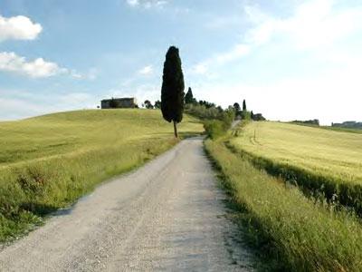 Farmhouse Podere Pienza Tuscany  - View