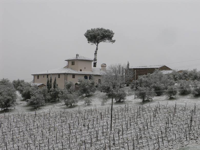 Villa during winter
